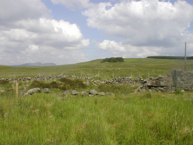 Rough Pasture north of the ruins of Corseglass School