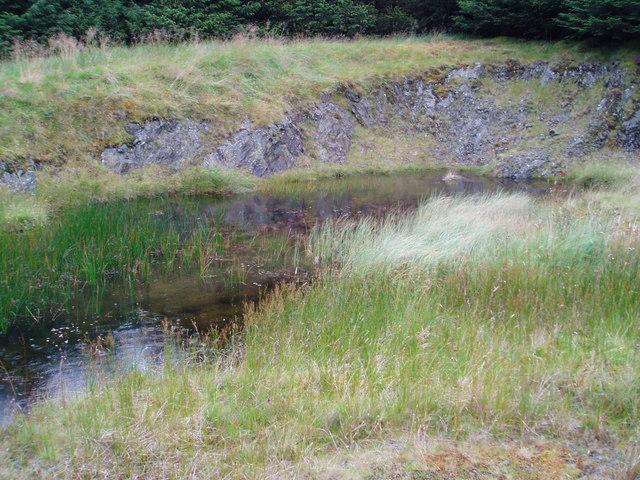Forest Pond, Glenshimmeroch.