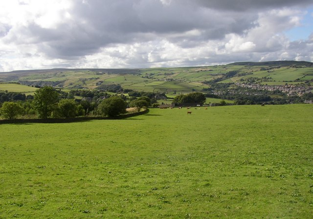 Field with a view, Linthwaite