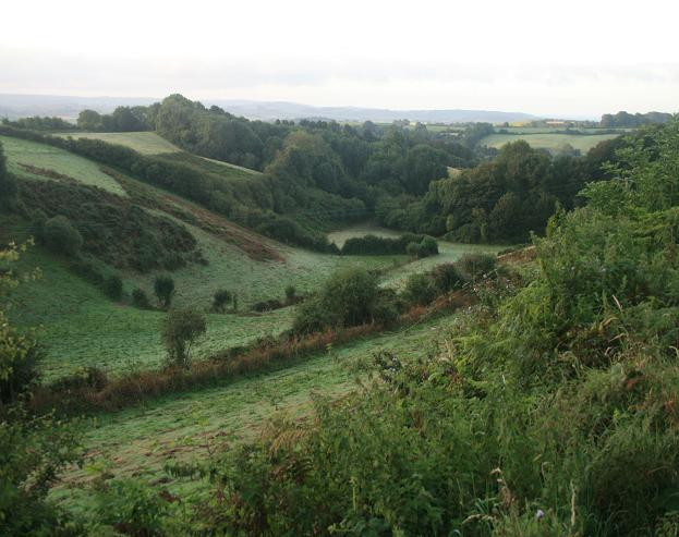 South of Stoke Knapp