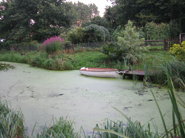 Decorative garden beside the road - with rowboat
