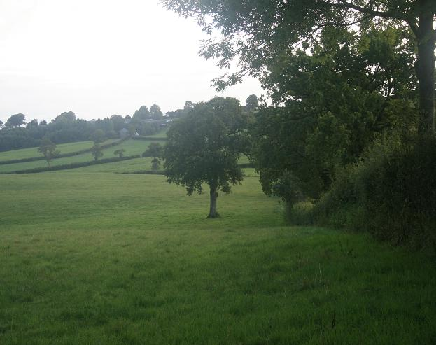 West Dibberford Farm
