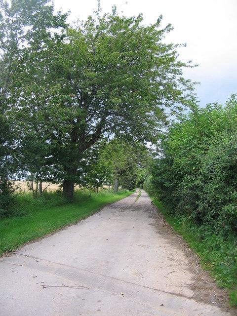 Lane to Higher Holbrook Farm
