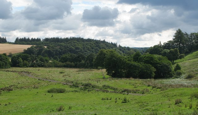 Rough pasture and woodland near the River North Tyne