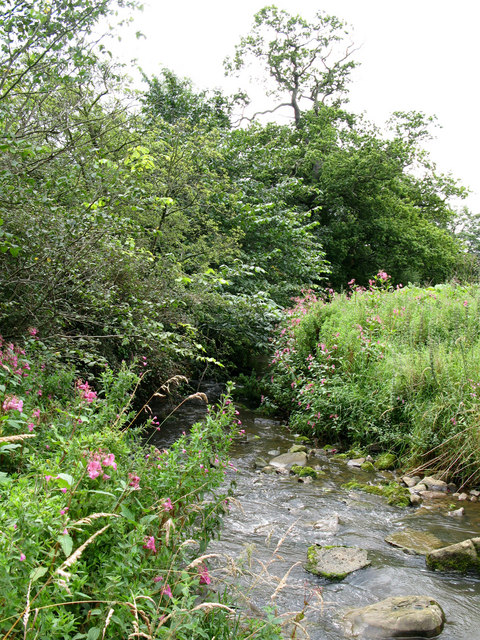 Ford for footpath on a minor tributary of the River North Tyne