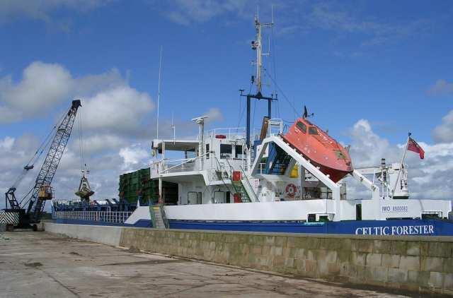 Celtic Forester in Dock