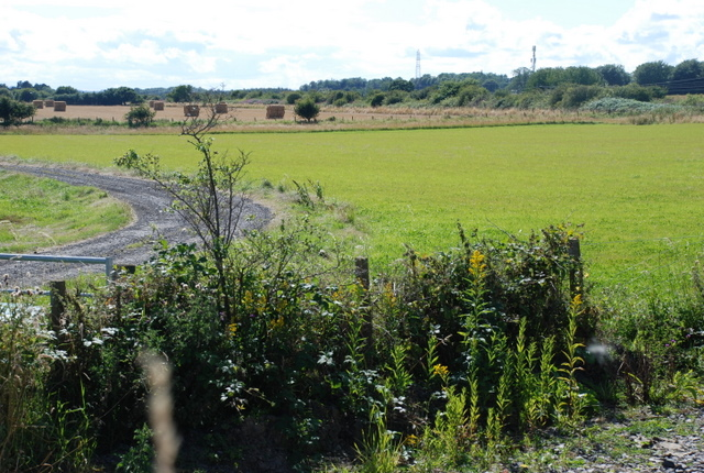 Fields at the side of the railway