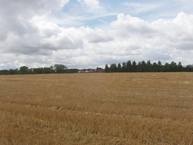 Wheatfield, Podington airfield buildings beyond