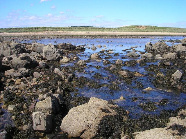 Lagoon and East Links