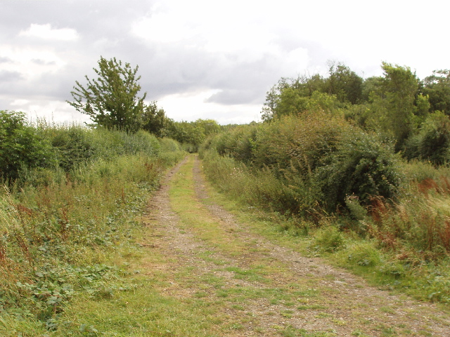 Public footpath into Great Hayes Wood