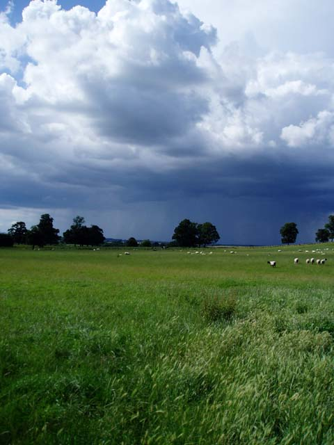 Rainclouds gathering over farmland