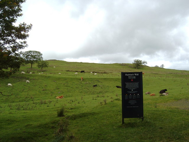 Pasture and sign near the carpark at Walltown Crags