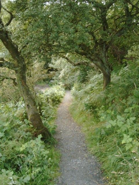 Pathway near Walltown Crags