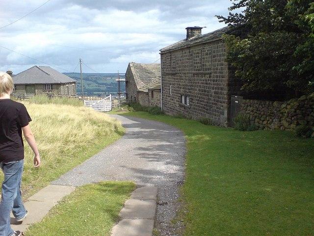 York View Farm