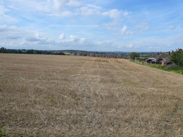 View Across Fields Towards Knighton Street
