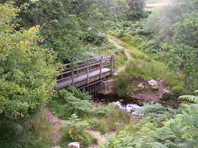 Bridge and ford across Forest Burn near Spylaw