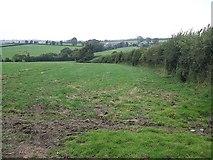 SX2975 : Fields near Tremollett by Rob Farrow