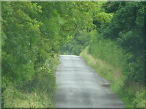 S4986 : Road view by liam murphy