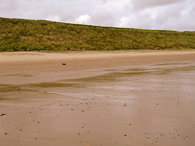 Low sand dunes at the back of the beach.