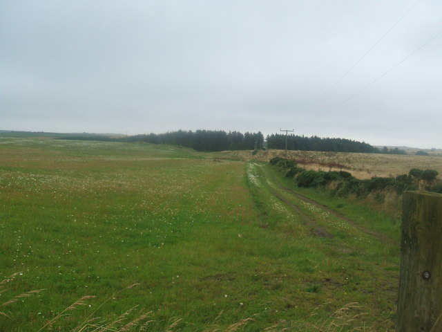 View from Moss Farm