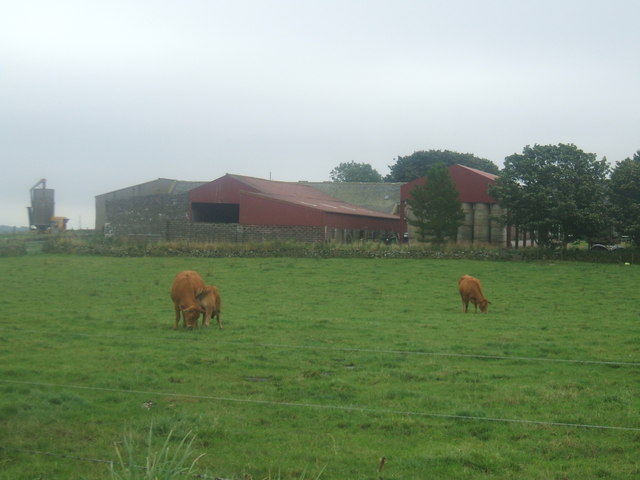 Mains of Dumbreck Farm