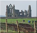 NZ9011 : Whitby Abbey by Peter Church