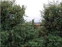 SX2975 : Stile & footpath near Bathpool by Rob Farrow