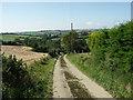SX1655 : Farm road to Furzedown by Richard Williams