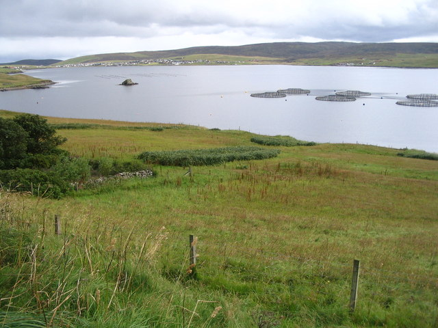 View towards the rock of Burgastoo on Busta Voe