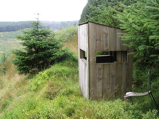 Observation hide in Craik Forest