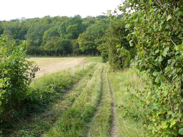 Bridleway Near Park Farm