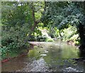 ST7859 : River Frome at Freshford Mill by Hugh McKechnie