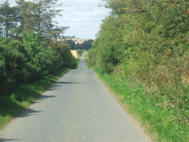 Road at Little Woodlands