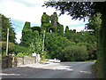 W4466 : Castles of Munster: Castlemore, Cork by Mike Searle