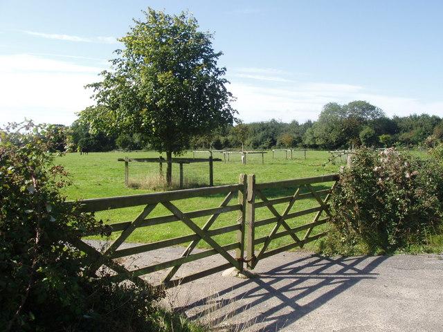 Gateley gates!