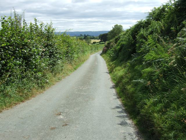 Quiet Welsh lane