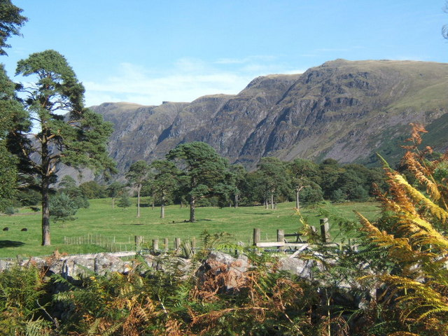 Park-like landscape near Nether Wasdale, looking to the screes