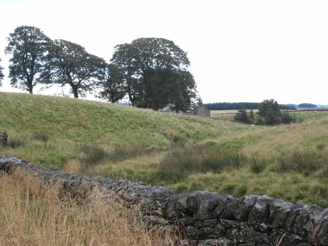 Harwood Head