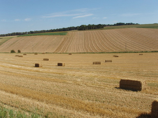 Harvested fields