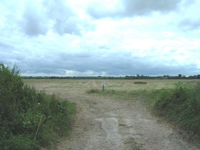 View south from Cary Fitzpaine