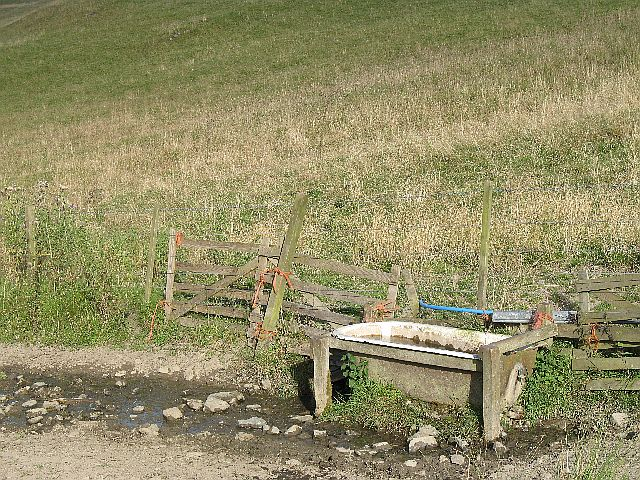 Drinking trough