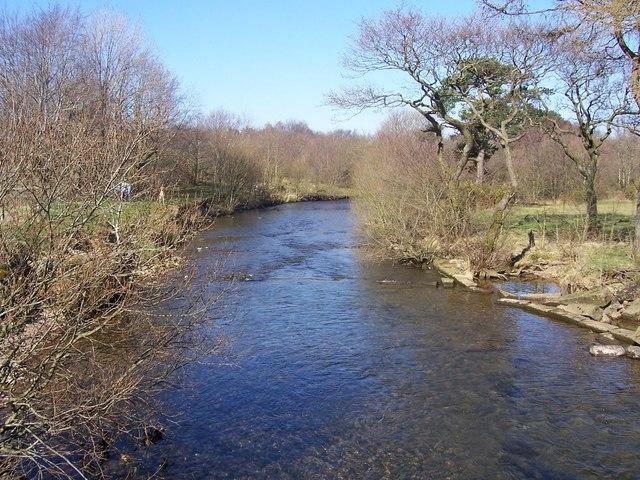 River Ehen