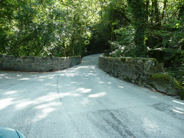 Torrent walk bridge