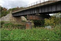 ST6868 : Railway bridge over the River Avon by Philip Halling