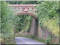 TQ0951 : The Lovelace Bridge, Dorking Arch by Colin Smith