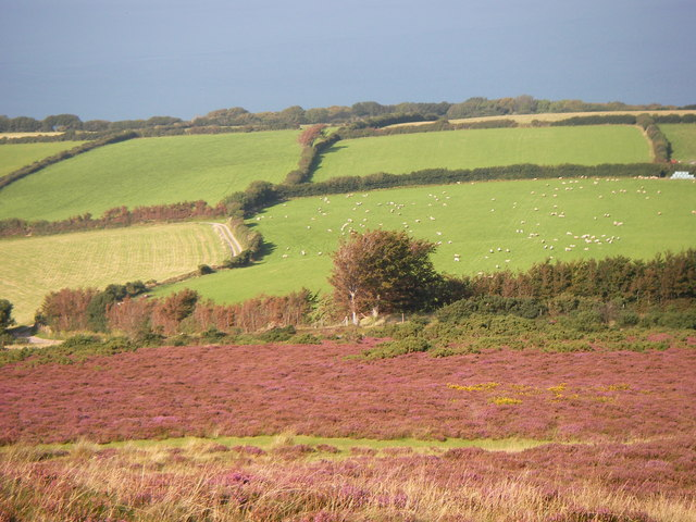 Eastcott Farm, Porlock Hill