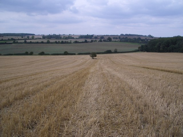 Field & View South-west of Stoke Wood