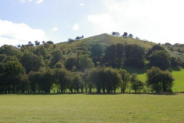 Small hill near Garth