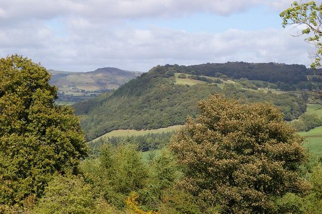 Mynydd y Bryn from the south