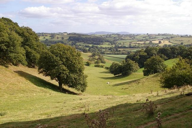 View from Cefn y Coed